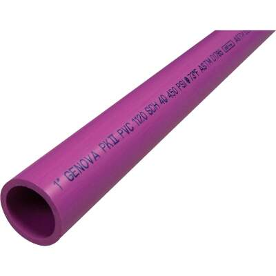 Charlotte Pipe 1 In. x 20 Ft. Purple PVC Pressure Pipe for Reclaimed Water Usage