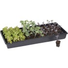 Root Farm 50-Cell Hydroponic Starter Kit Image 4